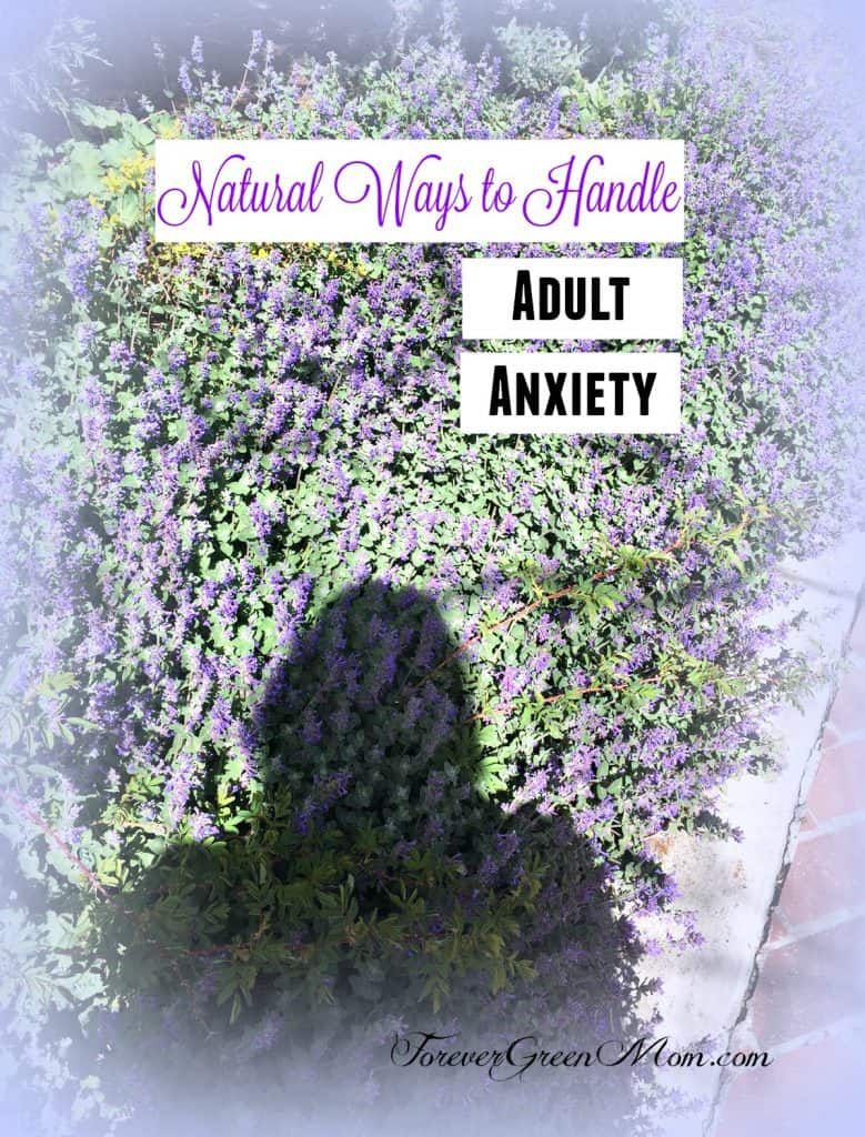 Natural Ways To Handle Anxiety