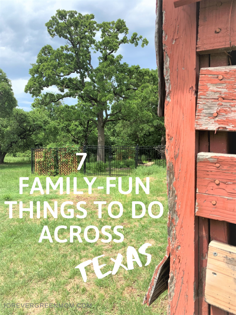 7 Family-Fun Things To Do Across Texas
